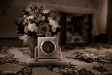 Фотосъемка свадьбы Евгения и Снежаны в Могилеве - кольца
